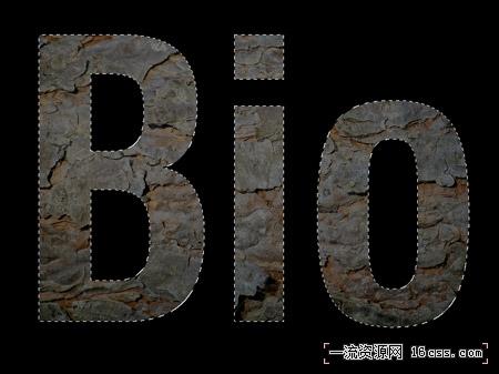 1f0e3dad99908345f7439f8ffabdffc4 以生物为题材的logo设计流程