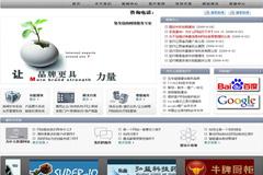 帝国CMS网络策划模板