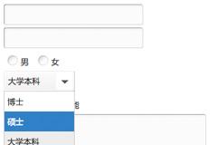 jqTransform - jQuery表单美化插件 - 美化select/input/radio/textarea/checkbox