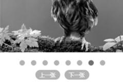 jQuery响应式触屏图片左右滚动代码owl.carousel