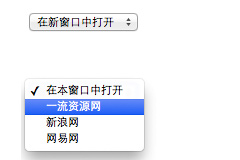 JS下拉框Select选项打开新链接代码