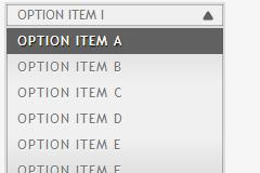 JQuery下拉列表select表单美化插件